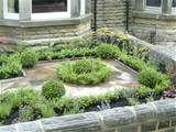 ... town-house front garden | Olive Garden Design and Landscaping