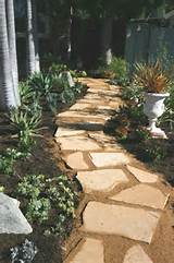 Succulent Garden Path   Succulents   Pinterest