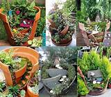 pots into fantastic miniature gardens instead of throw them away