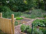 Backyard Raised Vegetable Garden Ideas - Landscaping Ideas : Landscape ...