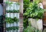 ... repurposes a shoe organizer into a vertical herb garden. C-l-e-v-e-r