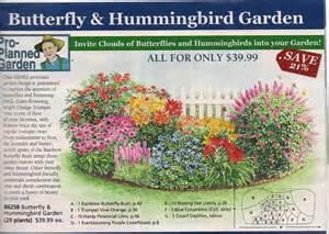 ... butterfly garden, east garden. | garden | Pinterest | Butterflies