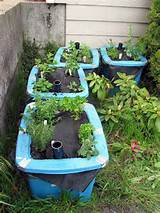 herb container garden | Flickr - Photo Sharing!
