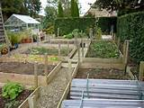 Raised Bed Vegetable Garden Ideas