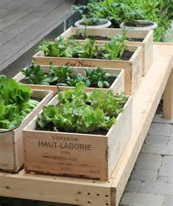 Small Space Gardening - How to Grow a Garden in Containers | Jennifer ...