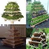 Herb Garden Idea | Garden | Pinterest
