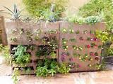 DIY Vertical Garden | DIY Projects | Pinterest