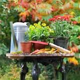 flower pots plant pots garden planters garden pots fall garden