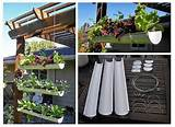 homemade hanging garden | Brilliant Ideas | Pinterest