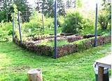 garden edge ideas vegetable garden border ideas modern home design
