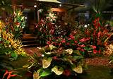 Singapore Garden Festival 2012 – Enter the Gardens of the Future ...