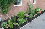 Front Garden Images Ideas | Native Garden Design