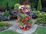 Container gardening | Garden ideas | Pinterest