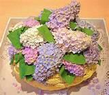 garden flower cake cake designs pinterest