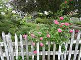 The picket fence garden at Northwind Perennial Farm in Burlington, WI ...