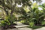 south florida tropical landscaping ideas tropical garden and landscape
