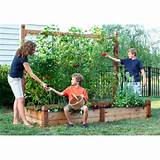 Out Of Your Gourd Gardening vertical gardening - fastaanytimelock.com