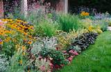 plant layering ideas in front for the home pinterest
