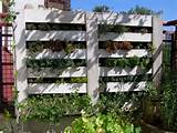 Pallet Vertical Garden - 16 Do It Yourself Ideas | Wooden Pallet ...