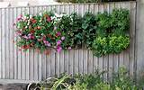 container gardening vertical garden wall containers ideas