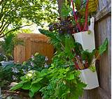 ... Gardening Ideas: Vertical Gardening Ideas With Plastic Containers