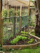 vertical-garden-ideas-ideas-for-garden-beds-vertical-gardens-and ...