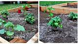 garden-ideas-vegetable-garden-luxury-vegetable-garden-bed-ideas ...