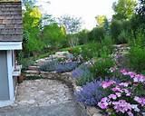 Parterre de fleurs – 21 idées magnifiques pour le jardin