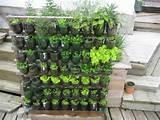 ... indoor vertical garden , vertical indoor garden , diy vertical garden