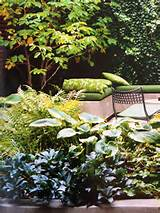 raised beds garden ideas pinterest