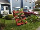 ... Jabbour - The Year Round Veggie Gardener: A Vertical Pallet Garden