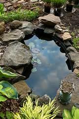 Pre-formed Pond