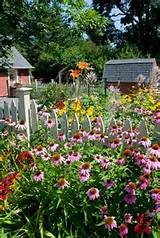 Perennial flower garden in her sunny summer backyard!