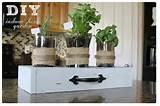 DIY indoor herb garden, mothers day gift idea | Trendvee
