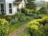 easy landscaping ideas for front of house | HOME DESIGN COLLECTION