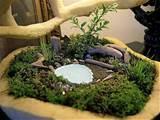 Bonsai-like miniature garden with a pond