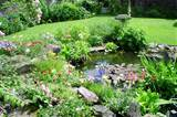 Welcome to gardening designs: Wild garden