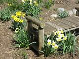 rustic wood benches and flowers creating gorgeous outdoor seating