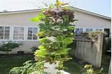 Vertical Garden ideas | VERTICAL & HANGING GARDENS | Pinterest