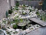rock garden ideas tropical rock garden design ideas small rock garden