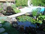 garden fence ideas - Beautiful Flower Water Garden Ideas – Newton ...