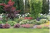 landscaping ideas traditional landscape arcadia gardens llc Cool 7 ...