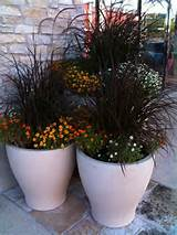 Fall Container Planting Round-Up - J Peterson Garden Design