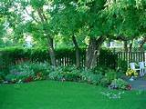 Shade Garden Edging Ideas: 15 Interesting Shade Garden Ideas Snapshot ...