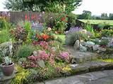 dream cottage garden garden ideas pinterest