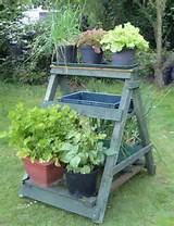 How To Reuse A Ladder As A Plant Stand – 15 Ideas | Shelterness
