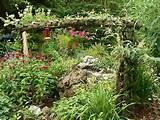 Butterfly Garden Photograph
