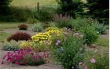 for high desert landscaping ideas high desert landscaping ideas