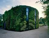 vertical garden on the exterior of a home talk about a green house