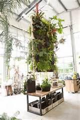 Cómo crear un jardín vertical con Woolly Pocket | Maria victrix